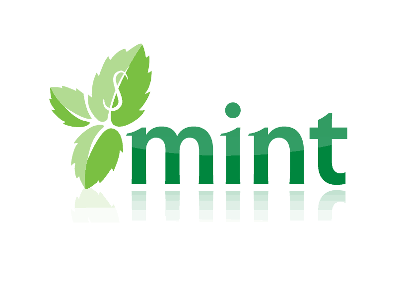 Mint Online Money Management