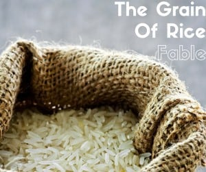The Grain Of Rice Fable - A Story of Compound Interest