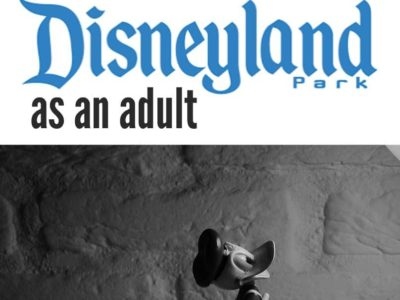 If you think Disney is just for your kids you couldn't be more wrong. Here are seven reasons to visit Disneyland as an adult.