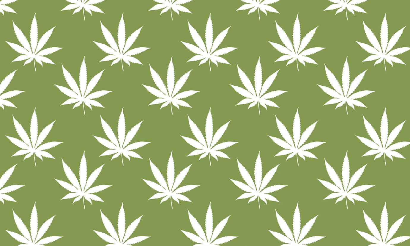 Marijuana Stocks and Other Ways to Invest in Cannabis
